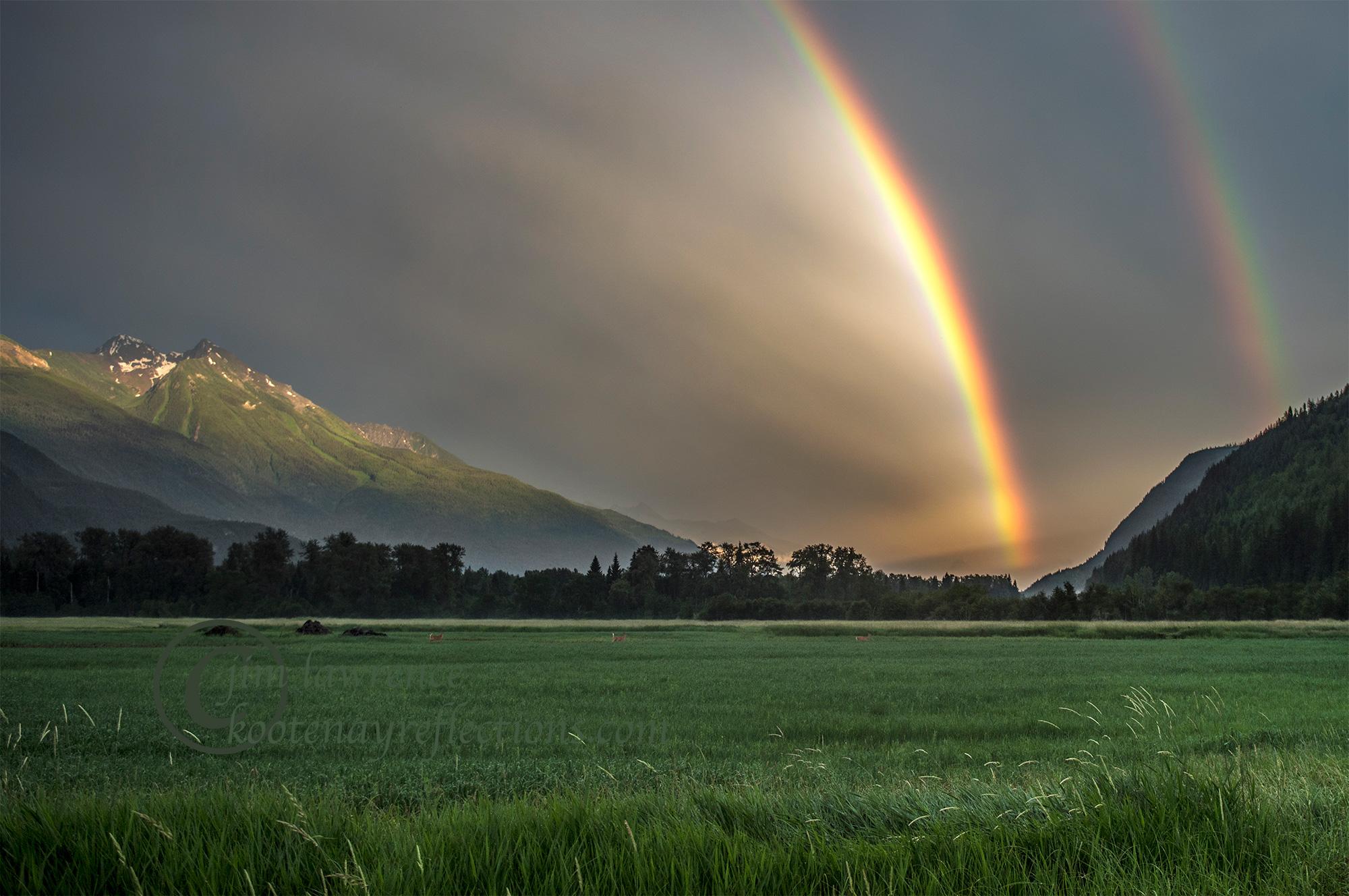 Rainbow-WM-2000px